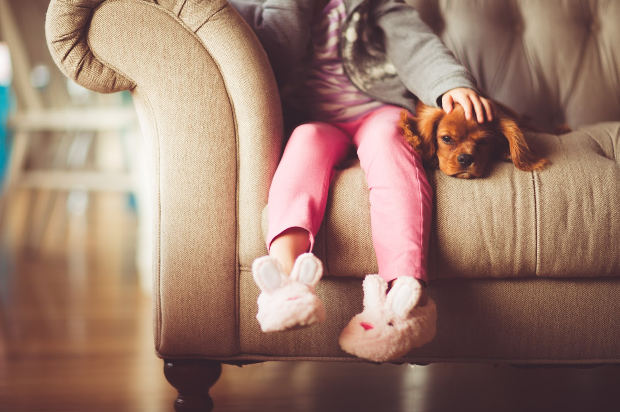 Can Therapy Dogs Help My Anxious Child?